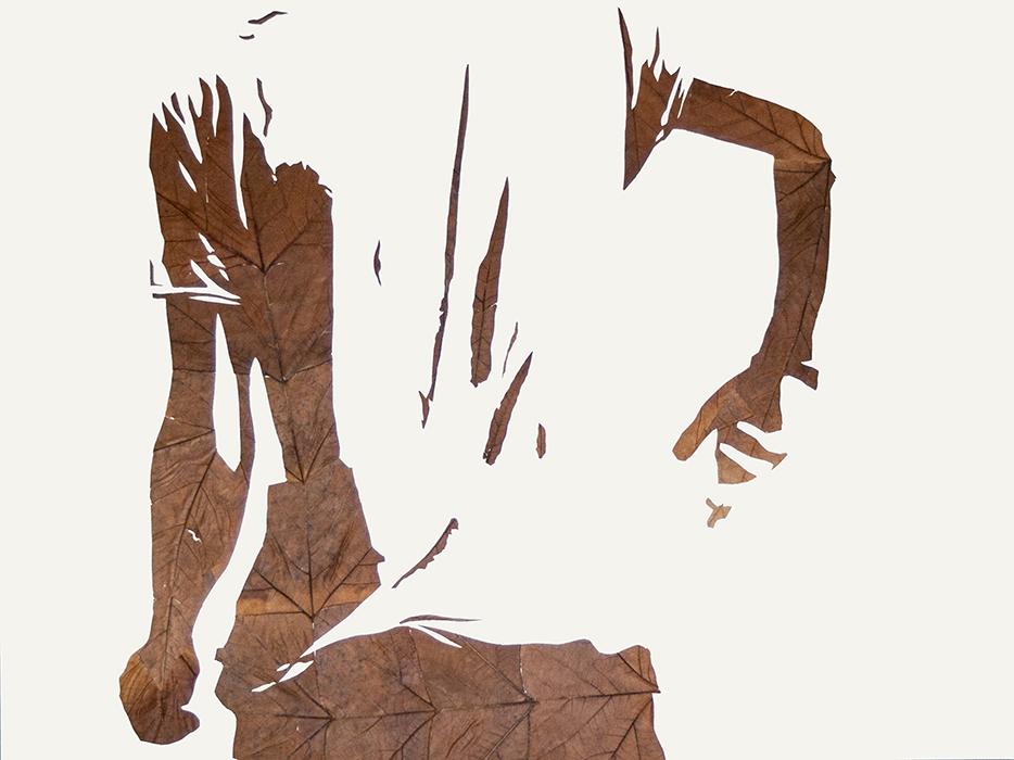 Schönes Licht II | Laub auf Papier | 2016 | 60 x 80 cm