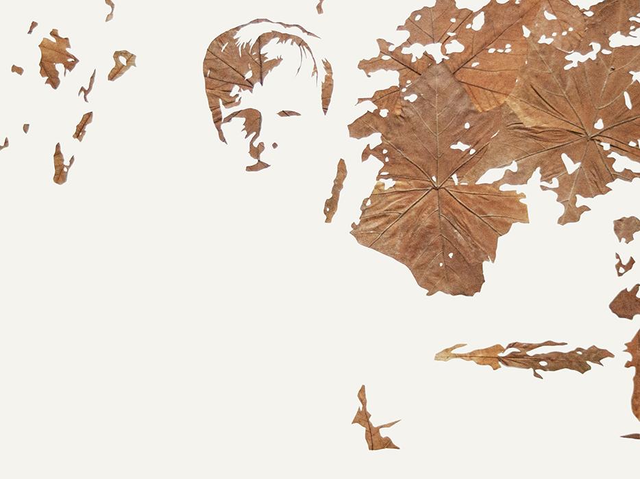 Lichtbild 2013-4 | Laub auf Papier | 2015 | 60 x 80 cm