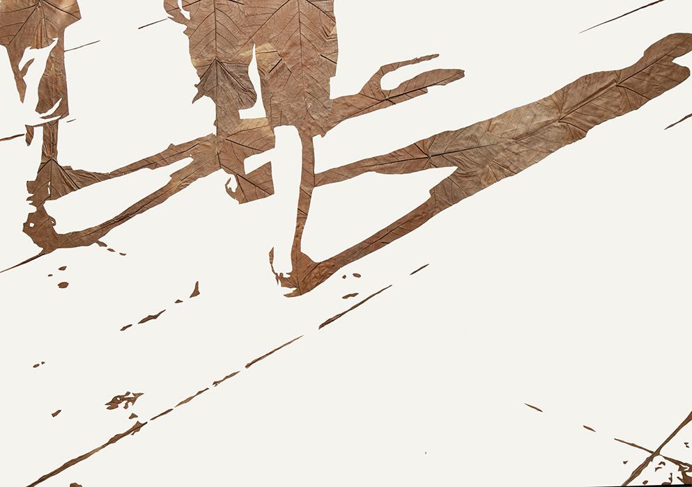Lichtbild 2014-5 | Laub auf Papier | 2016 | 60 x 80 cm