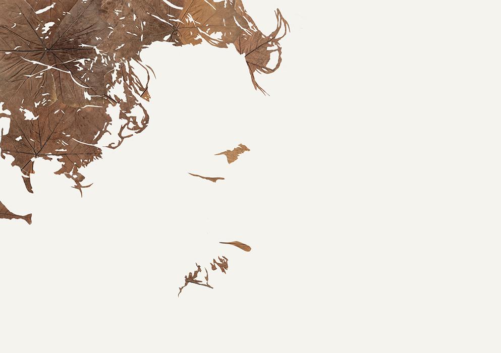 Lichtbild I | Laub auf Papier | 2015 | 86 x 122 cm