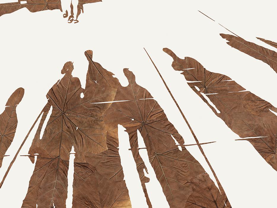 Licht und Schatten | Laub auf Papier | 2015 | 60 x 80 cm