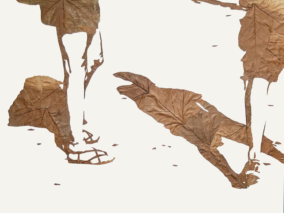 Lichtbild 2014-64 | 2018 | Laub auf Papier | 60x80 cm