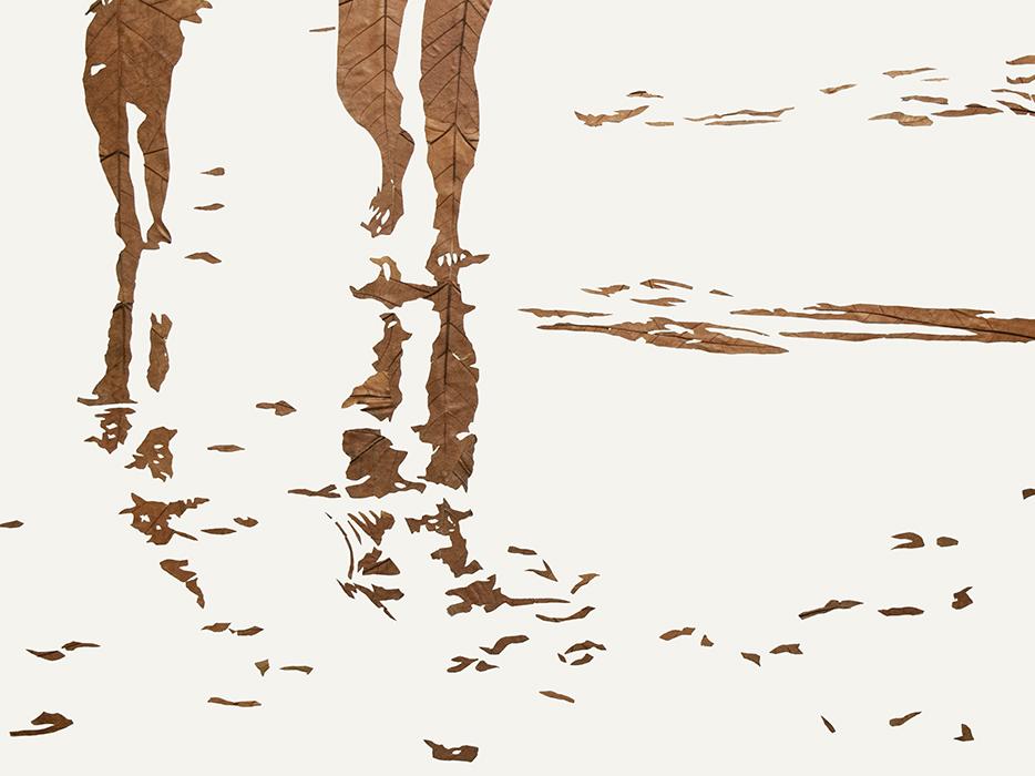 Lichtbild 2018-02 | 2019 | Laub auf Papier | 60x80 cm