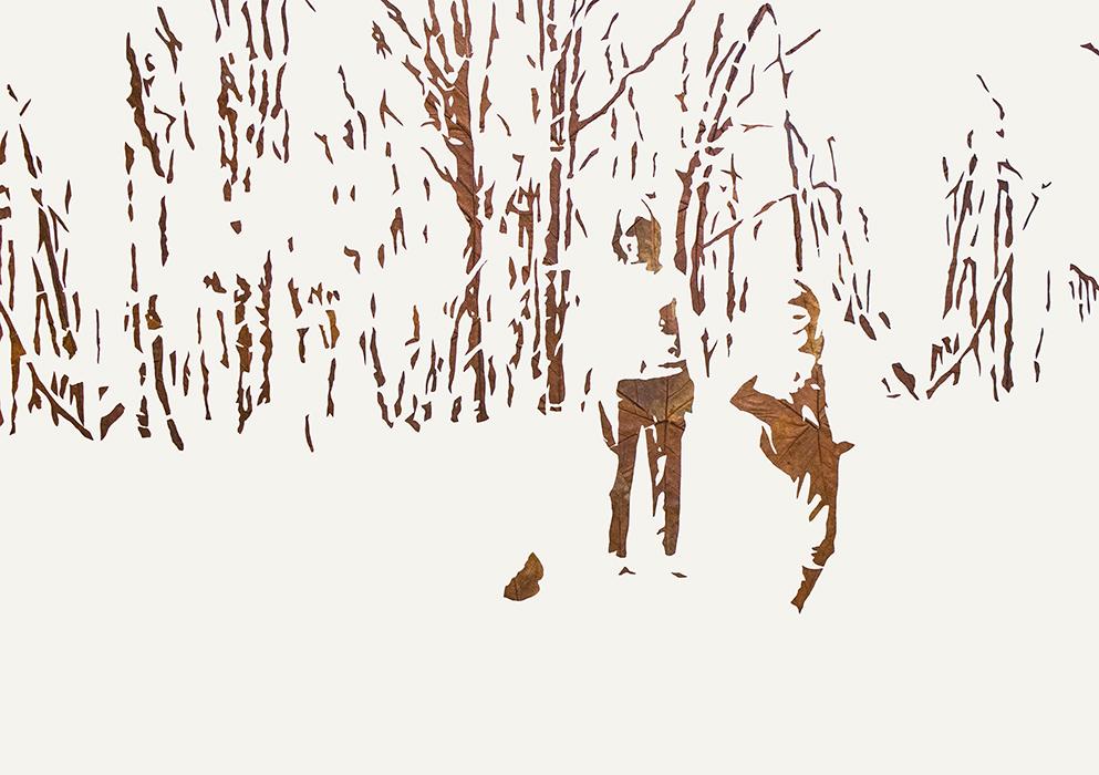 Lichtbild 1970-01 | 2019 | Laub auf Papier | 86x122 cm
