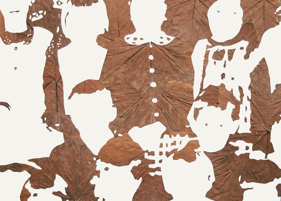 Lichtbild 1968-02 | 2015 | Laub auf Papier | 140x200 cm | Ausschnitt.